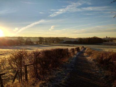 Winter walk f