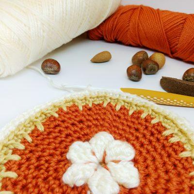New England in Fall Cushion Crochet Along - Free Crochet Pattern - Crochet Cloudberry